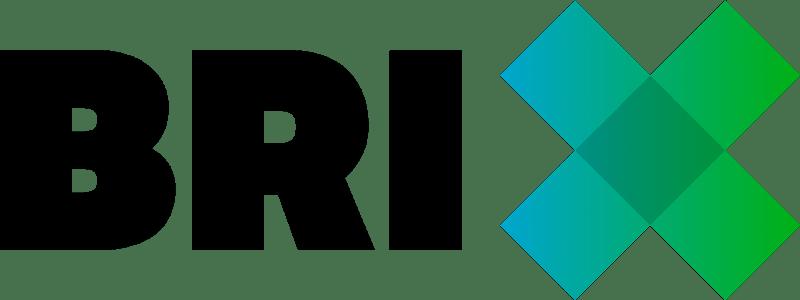 CTOUCHES Logo Brix