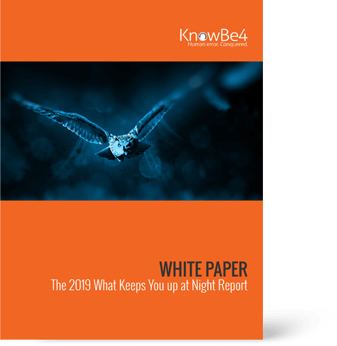Whitepaper Security Awareness Training